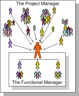 Scope of Functional and Project Managers